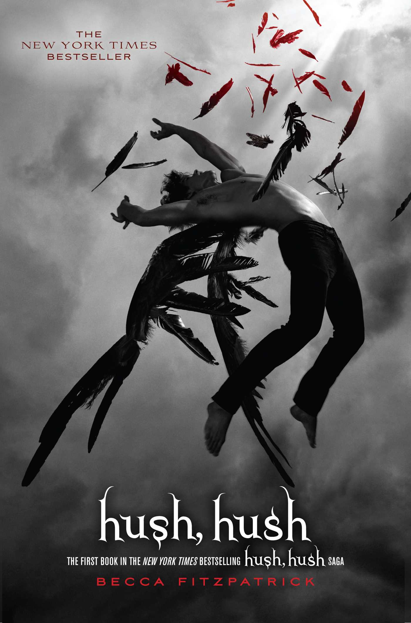Hush Hush Book Cover